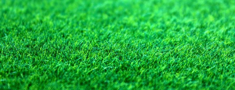 Une pelouse artificielle bien verte
